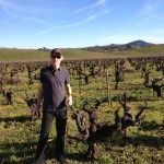 Yours truly standing alongside some ancient Zinfandel vines at the Lytton Springs vineyard, outside the Ridge winery.